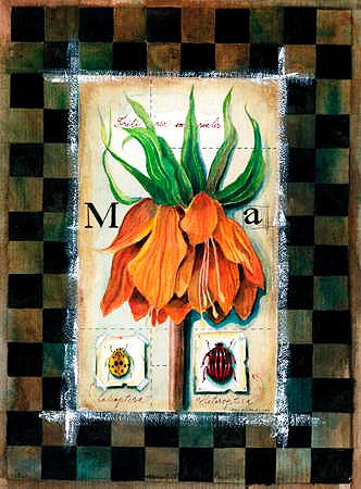 Oranssi lilja